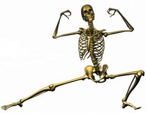 Nutri Dyn Skeleton