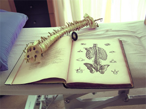 Image of a chiropractors book and tools.